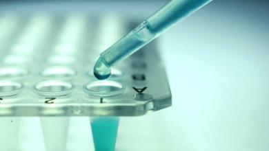 Kök Hücre Tedavisi Yöntemleri Nelerdir?