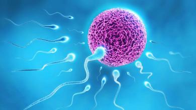 Erkek Kısırlığında Tüp Bebek İle Başarı Elde Edilebilir Mi?